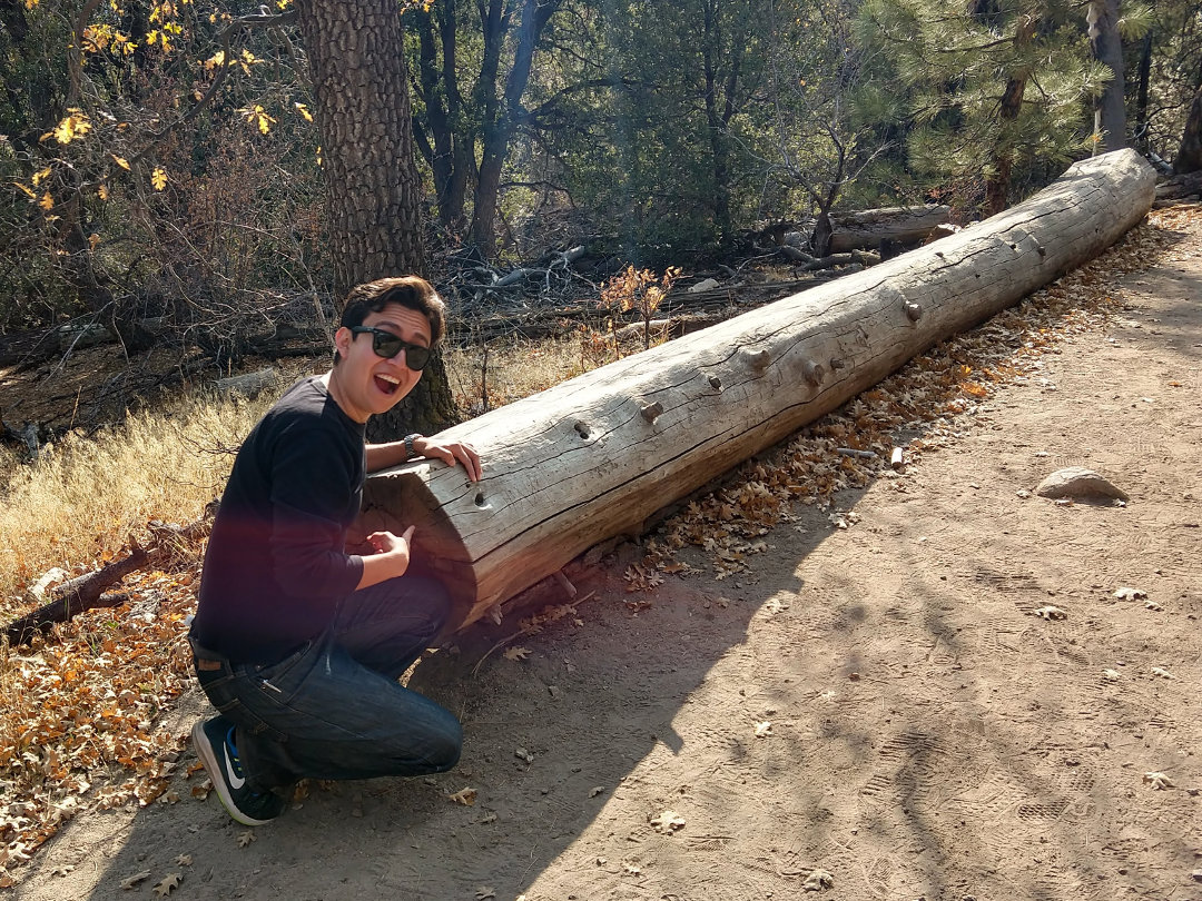 Jonathan excitedly points at a particularly large log